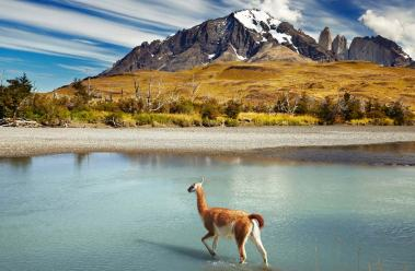 chile-natur-reisen-patagonient