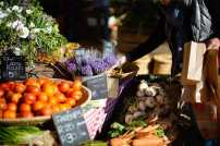 markets-in-cape-town-oranjezicht-city-farm-market