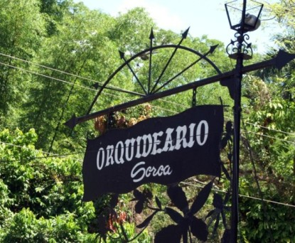 Orq_Soroa